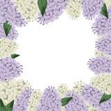 Lila blommagräns royaltyfri illustrationer