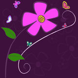 Lila blommakort Royaltyfri Fotografi