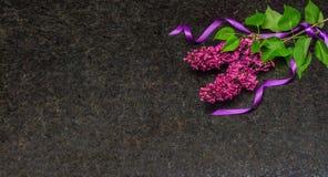 Lila blomningfilialer på antikvitet bryner granitcountertopen Royaltyfri Foto