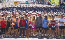 Lila Bloomsday 2013 12k inkörd Spokane WA startande linje Royaltyfria Bilder