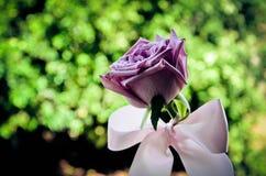 Lila Blume mit Spitze Lizenzfreie Stockbilder