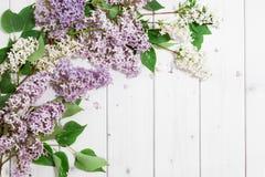 Lila Blumen auf dem hölzernen Hintergrund Lizenzfreie Stockbilder
