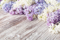 Lila Blumen auf hölzernem Hintergrund, Blütenniederlassung auf Weinleseholz stockfoto