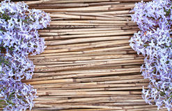 Lila Blumen auf trockenem Reedhintergrund Lizenzfreie Stockfotografie