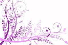 Lila Blumenabstraktion, Muster Stockbilder