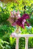 Lila Blumenstrauß Stockbilder