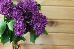 Lila Blumenstrauß im Vase Stockfotos
