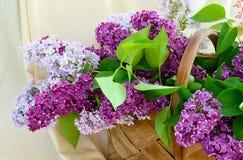 Lila Blumenstraußgewebeteil stockfoto