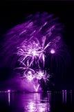 Lila Feuerwerk in einem nächtlichen Himmel Stockbild