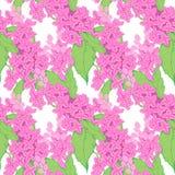 Lila filial, lilablommor Kan sömlösa modeller för vektor, användas som romantisk bakgrund som gifta sig inbjudningar, hälsningkor stock illustrationer
