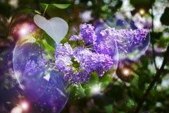 Lila floreciente stock de ilustración