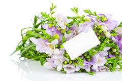 Lila Freesieblumen und eine Grußkarte Lizenzfreies Stockbild