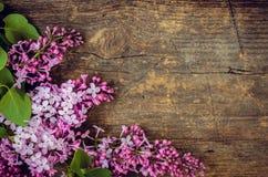 Lila hermosa en un fondo de madera Fotografía de archivo