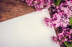 Lila hermosa en un fondo de madera Imágenes de archivo libres de regalías