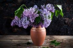 Lila i en vas av olika färger Royaltyfri Foto