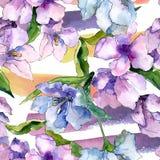 Lila- och blåttalstroemeriablommor Blom- botanisk blomma Seamless bakgrund mönstrar Royaltyfria Foton