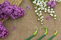 Lila och liljekonvalj på en kanfasbakgrund Arkivbild