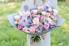 Lila och rosa pastellfärgad härlig vårbukett Ung flicka som rymmer en blommaordning med olika blommor brigham arkivbild