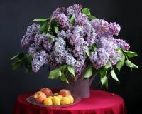 Lila púrpura en el florero y la fruta Imagen de archivo