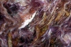 Lila sällsynt kristall Makro arkivfoton