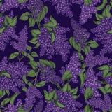lila S?ml?s modell f?r vektor i tappningstil just rained Blomningbuskar V?xter parkerar och arbeta i tr?dg?rden in stock illustrationer
