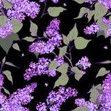 Lila seamless mönstrar Royaltyfria Bilder
