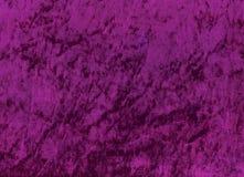 lila shimmery velours Royaltyfria Foton