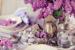 Lila stilleben Royaltyfria Bilder