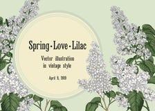 lila white just rained H?lsningkort med den blom- modellen royaltyfri illustrationer