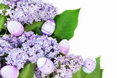 Lila y huevos púrpuras Imágenes de archivo libres de regalías
