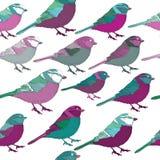 Lila y modelo inconsútil de los pájaros de la turquesa Ilustración del vector en el fondo blanco Fotos de archivo libres de regalías