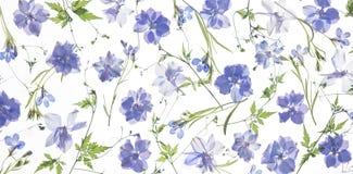 Lilablommakronblad och sidor royaltyfria foton