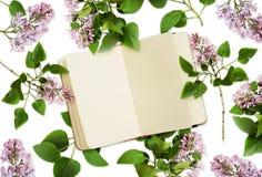 Lilablommor och en anteckningsbok royaltyfria foton