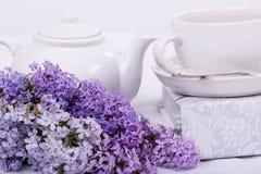 Lilac 2 do estilo de vida Fotografia de Stock