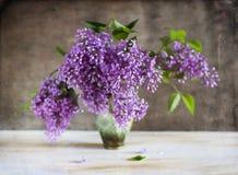 Free Lilac Stock Photo - 40724330