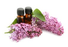 Lilac Stock Images
