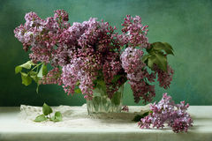 Lilac. Still life with beautiful lilac stock photos