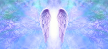 Lilac Angel Wings Banner. Wide wispy background with a pair of lilac Angel Wings on the center and a shaft of bright light between with copy space both sides vector illustration