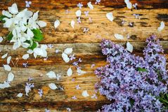 Lilac and apple flowers on wooden table royalty free stock photo