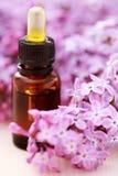 Lilac aromatherapy Stock Image