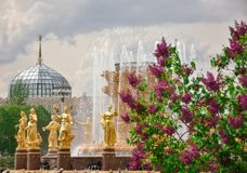 Lilac on the background of the fountain of friendship of peoples royalty free stock photos