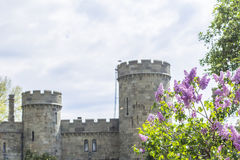 Lilac in the background the towers of the Vorontsov Palace. Background landscape blossoming lilac branches in the background the towers of the Vorontsov Palace stock image