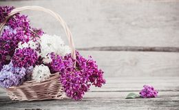 Lilac in basket on wooden background Stock Photo