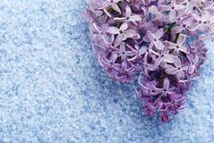 Lilac bath salts Royalty Free Stock Image