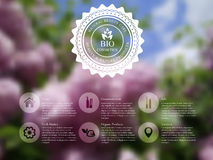 Lilac bllured website template Stock Images