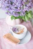 Lilac bloei, koffie en fruitzachte toffee Royalty-vrije Stock Afbeelding