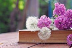 Lilac bloemen en paardebloemen die op oud boek liggen royalty-vrije stock fotografie