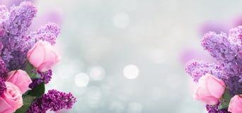 Lilac bloemen met rozen royalty-vrije stock fotografie