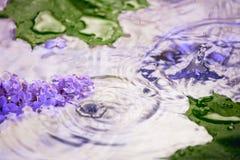 Lilac bloemen onder de dalingen van de regen Stock Fotografie