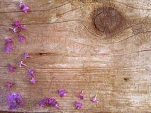 Lilac bloemen op een achtergrond Royalty-vrije Stock Afbeeldingen
